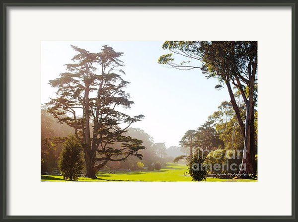 Golden Gate Park San Francisco Framed Print By Artist And Photographer Laura Wrede