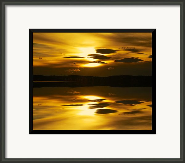 Golden Framed Print By Kevin Bone