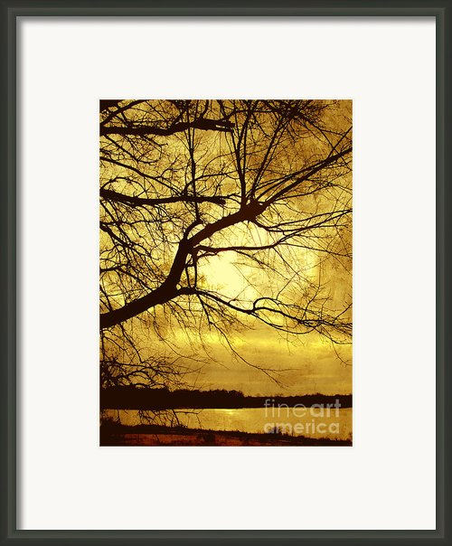 Golden Pond Framed Print By Ann Powell