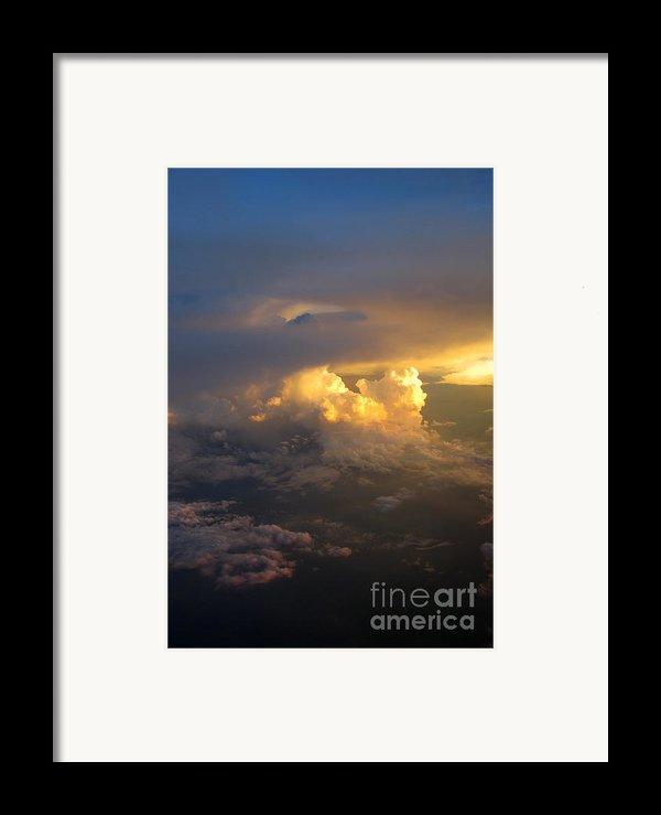 Golden Rays Framed Print By Ausra Paulauskaite