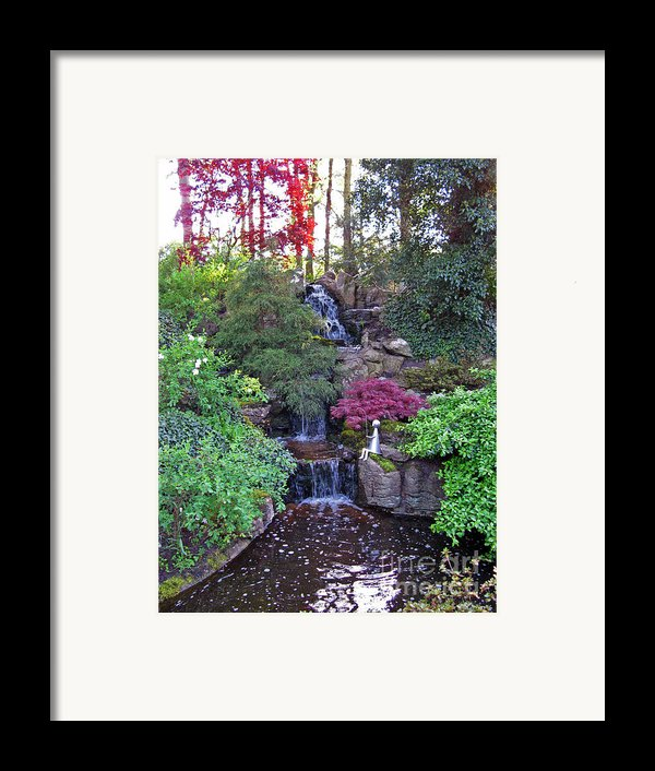 Gone Fishing. Keukenhof Gardens. Holland Framed Print By Ausra Paulauskaite