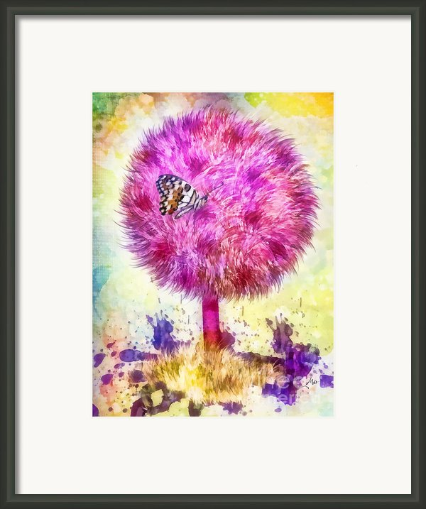 Good Luck Tree Framed Print By Mo T