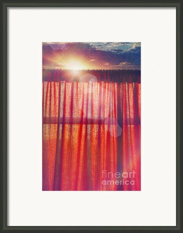 Goodmorning Sunshine Framed Print By Danilo Piccioni