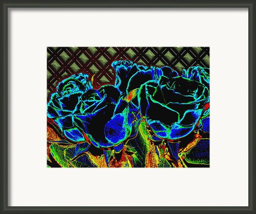 Goodnight Rose Framed Print By Wendy J St Christopher