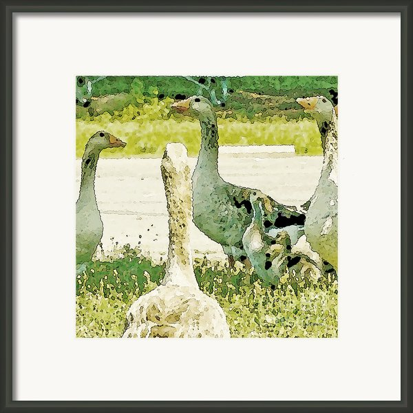 Goose Chat Framed Print By Artist And Photographer Laura Wrede
