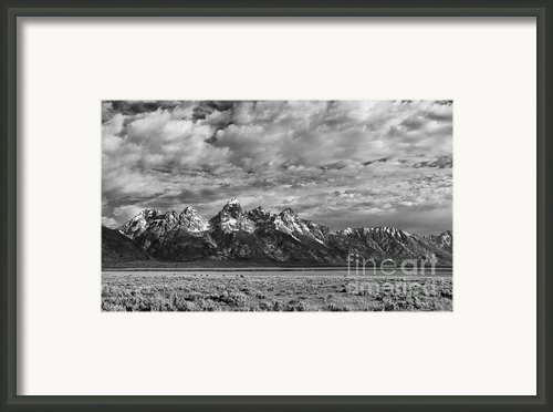 Grand Teton Majesty Framed Print By Sandra Bronstein