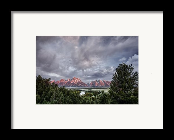 Grand Treeton Framed Print By Jon Glaser