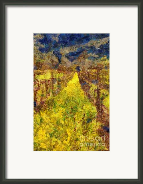 Grapevines And Mustard Framed Print By Alberta Brown Buller
