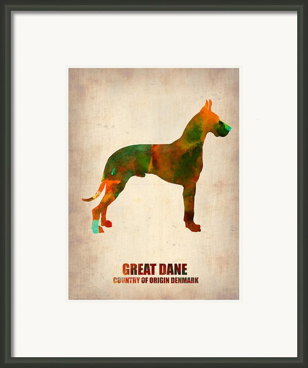 Great Dane Poster Framed Print By Irina  March