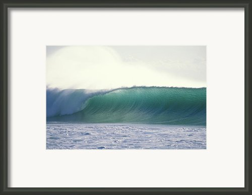 Green Feather Framed Print By Sean Davey