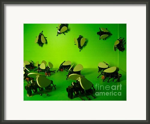 Green Lego Flies Framed Print By Amy Cicconi