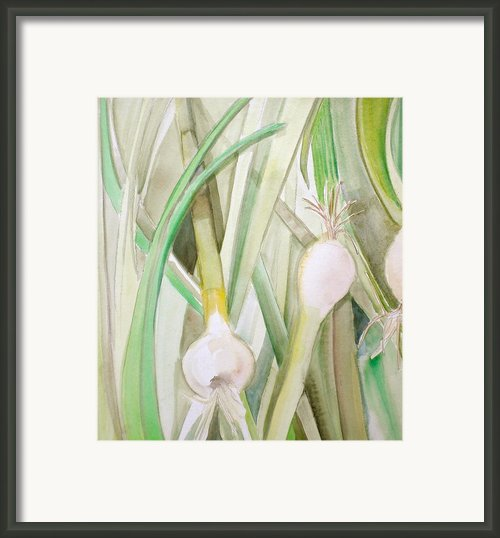 Green Onions Framed Print By Debi Pople