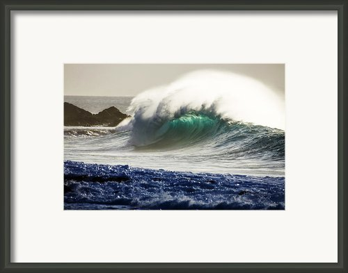 Green Reward Framed Print By Sean Davey