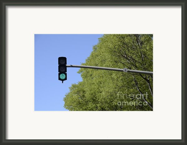 Green Traffic Light By Trees Framed Print By Sami Sarkis