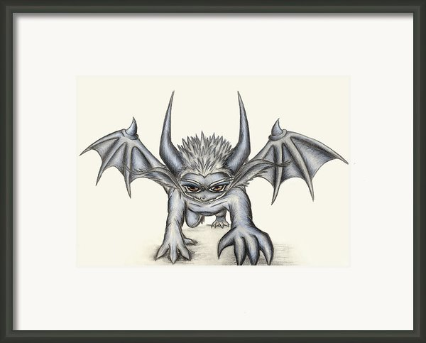 Grevil Framed Print By Shawn Dall