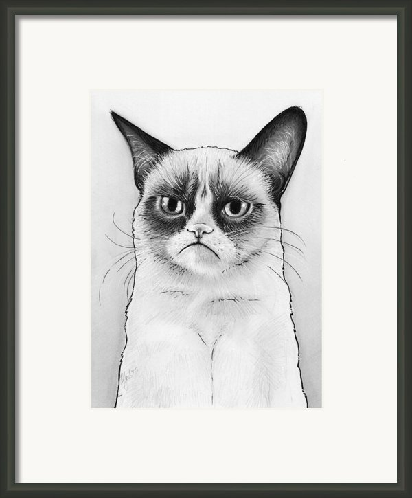 Grumpy Cat Portrait Framed Print By Olga Shvartsur