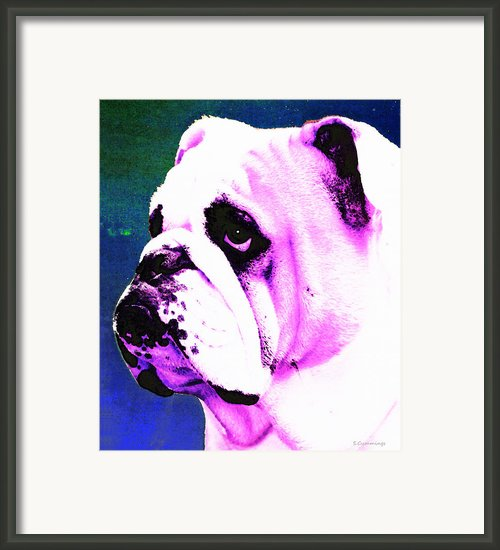 Grunt - Bulldog Pop Art By Sharon Cummings Framed Print By Sharon Cummings