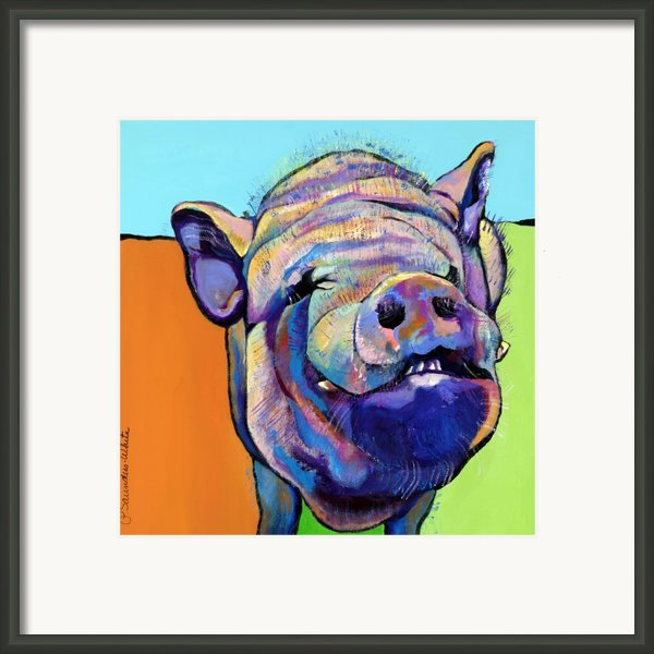 Grunt    Framed Print By Pat Saunders-white