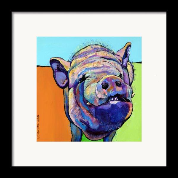 Grunt    Framed Print By Pat Saunders-white