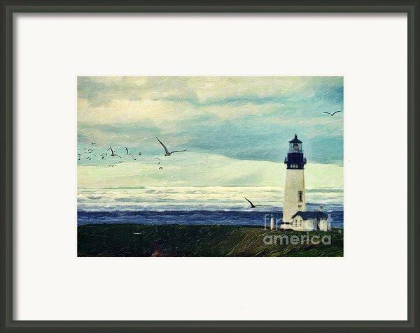 Gulls Way Framed Print By Lianne Schneider