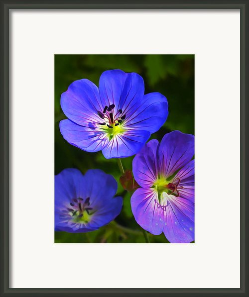 Happy Face Framed Print By Abeautifulsky  Photography