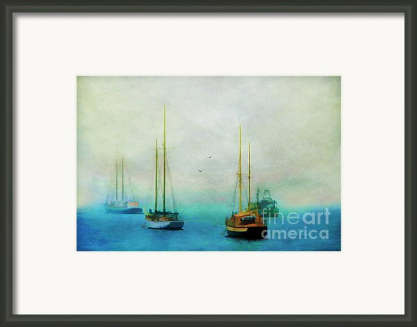 Harbor Fog Framed Print By Darren Fisher