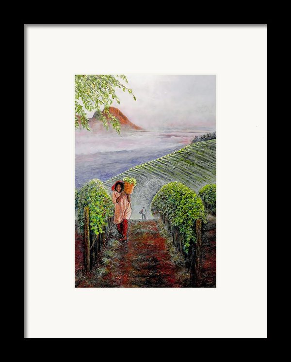 Harvest At Dawn Framed Print By Michael Durst