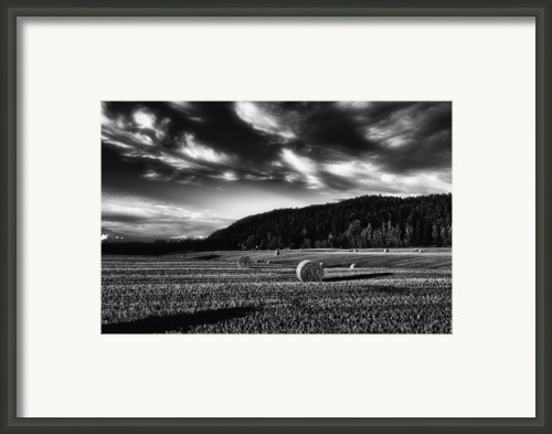 Harvest Framed Print By Erik Brede