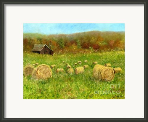 Hay Bales In The Meadow Framed Print By Vicky Watkins
