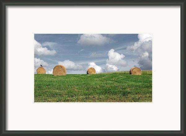 Hay Bales Framed Print By Steven  Michael