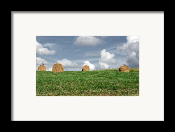 Hay Bales Framed Print By Steven  Michael