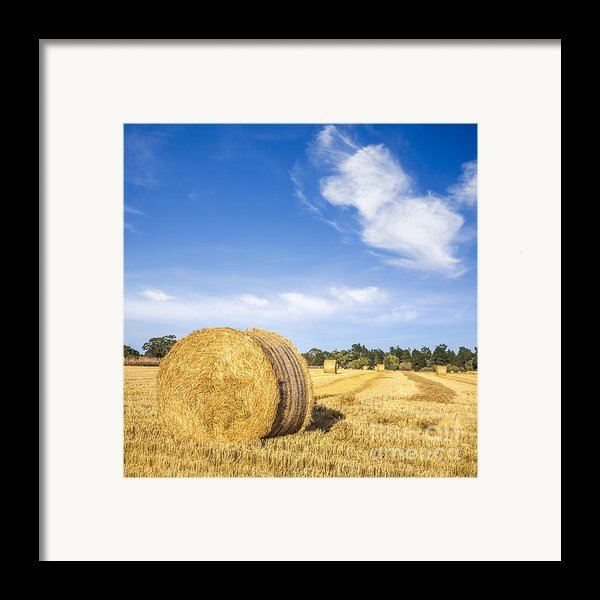 Hay Bales Under Deep Blue Summer Sky Framed Print By Colin And Linda Mckie