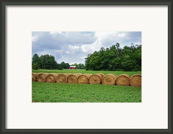 Hay Day Framed Print By Steven  Michael