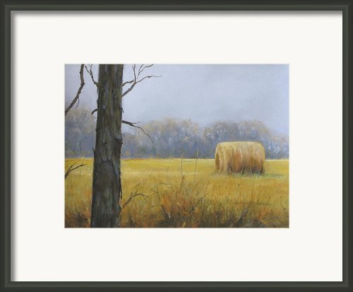 Haybale Framed Print By Jean Neely