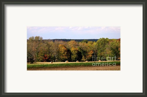 Haybales In Solebury Framed Print By Addie Hocynec