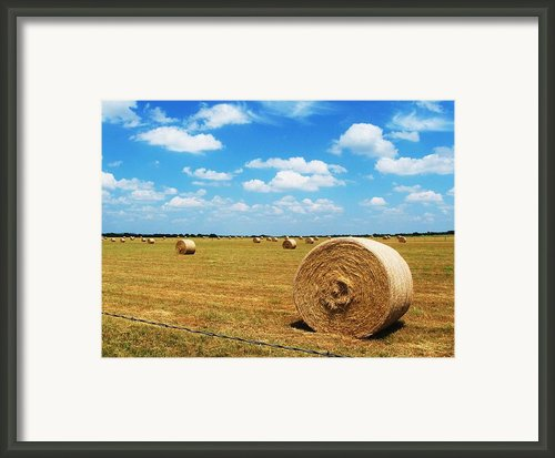 Hayfield Framed Print By Venus