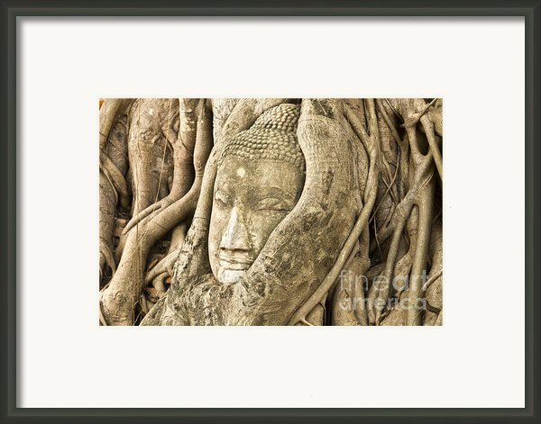 Head Of Buddha Ayutthaya Thailand Framed Print By Colin And Linda Mckie