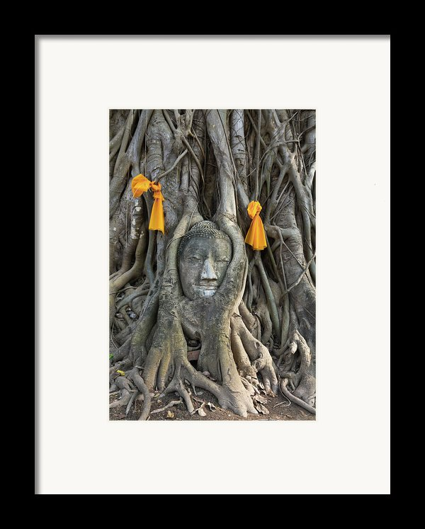 Head Of The Sand Stone Buddha Image Framed Print By Tosporn Preede