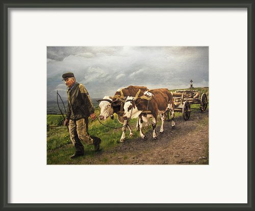 Heading Home Framed Print By Deborah Strategier