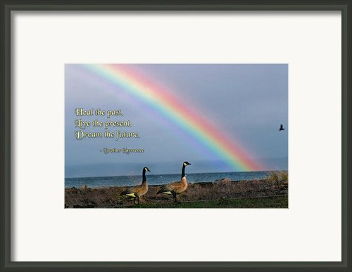 Heal The Past Framed Print By Mike Flynn