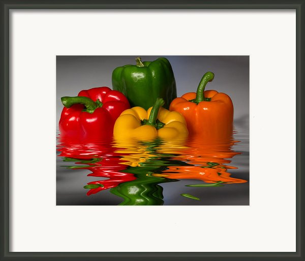 Healthy Reflections Framed Print By Shane Bechler