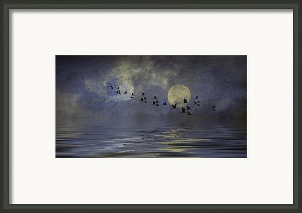 Heavens Gate Framed Print By Diane Schuster