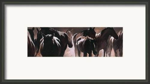 Herd Of Horses Framed Print By Natasha Denger