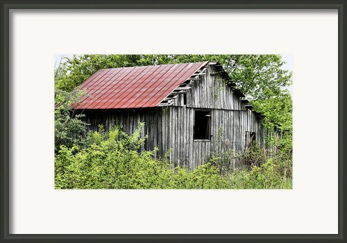 Hidden Framed Print By Jc Findley