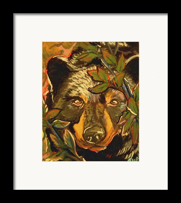 Hiding Bear Framed Print By Jenn Cunningham
