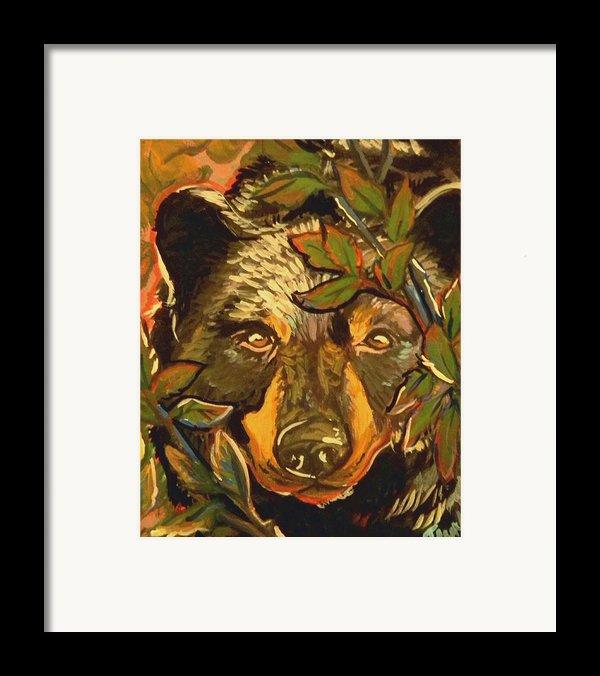 Hiding Bear Framed Print By Jenn Cunningham