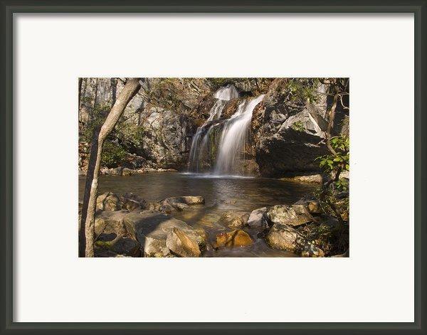 High Falls Talledega National Forest Alabama Framed Print By Charles Beeler