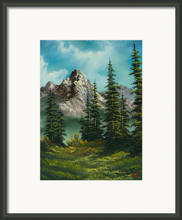 High Meadow Framed Print By C Steele