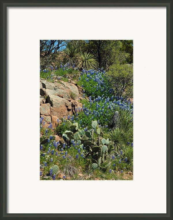 Hillside Blue Framed Print By Robert Anschutz