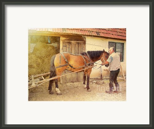 Hitched The Horses Framed Print By Odon Czintos
